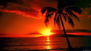 Desert island Discs - Exotica, Rhythm, Romance