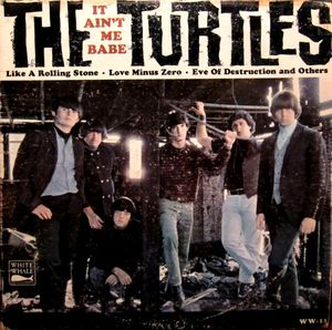turtles-it-aint-me-babe