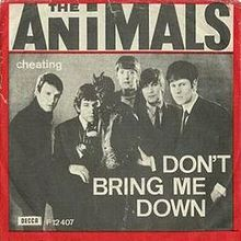 Animals_Don't_Bring_Me_Down