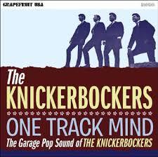 knickerbockers-one-track-mind